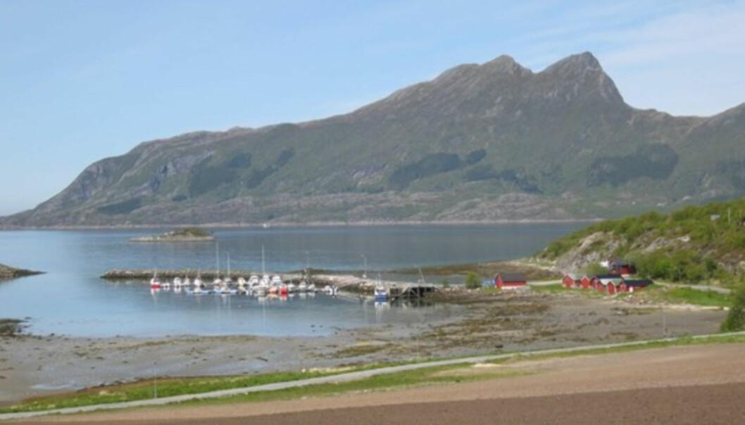 <strong>IDYLL:</strong> Noe sier meg at disse båtplassene ikke koster like mye som i indre oslofjord.