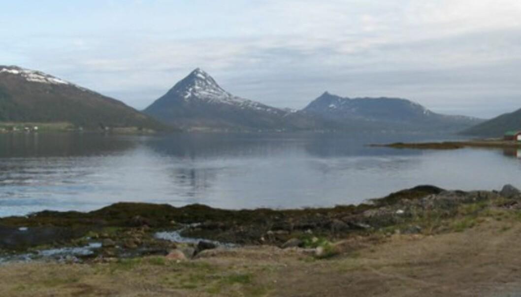 Fjordbotn camping har en flott beliggenhet. Her er utsikten fra hytta mi.