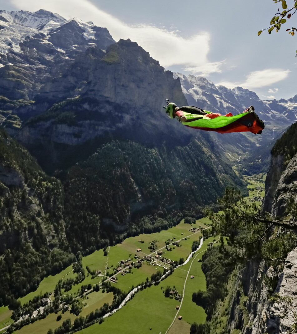 image: The Flight of Felix