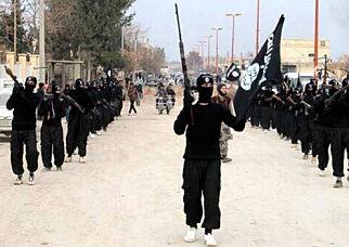 image: Mange av IS-krigerne synes å ha forsvunnet i løse lufta