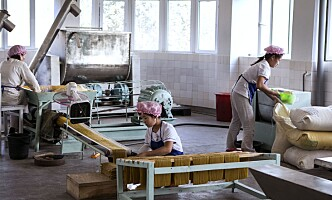 FULL STOPP: Etter at nyhetsbyrået AP avslørte at nord-koreanske arbeidere er blitt brukt til å produsere mat som er sendt til USA, ble det umiddelbart slutt på importen. Her fra et av regimets egne fabrikker i Chongjin. Foto: NTB Scanpix