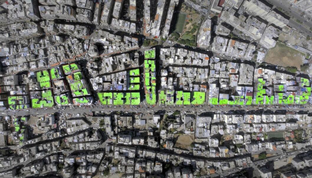 <strong>FRED:</strong> PÅ takene til mer en 85 hus i byen Tripoli i Libanon maler lokale kunstnere ordet fred. Foto: Ashekman / AFP / Scanpix