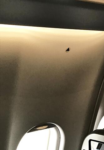 I SAS-FLY: Denne SAS-maskinen er merket med trekanter inne i kabinen. Trekanten betyr at det fra nettopp dette vinduet er best å observere flyets vinge. Foto: Tormod Brenna