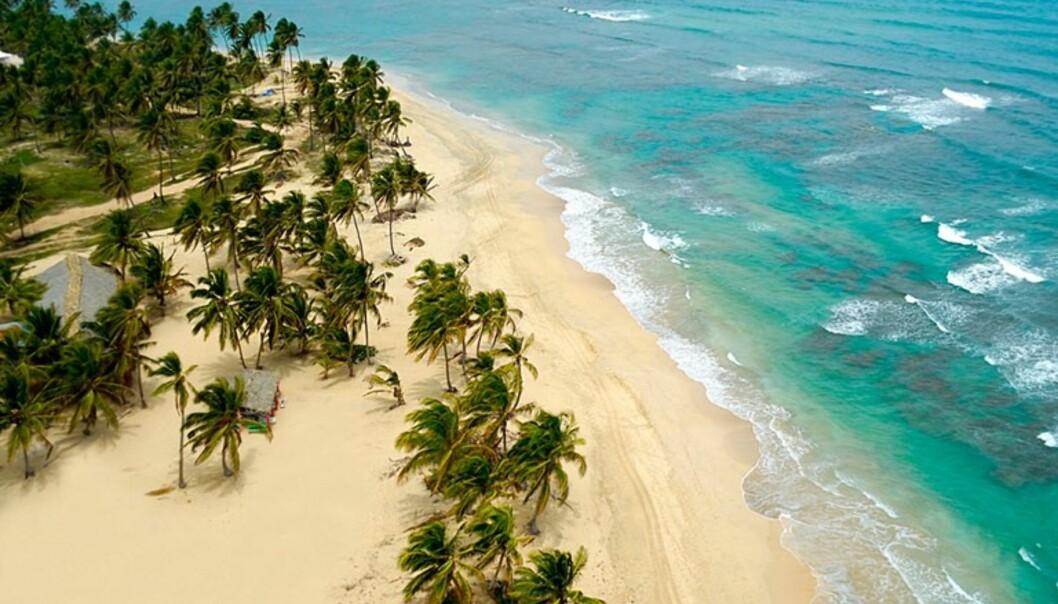 PARADISØY: ... til en rimeligere penge! Den Dominikanske Republikk er stillere mot lommeboken - men sparer absolutt ikke på luksusen.