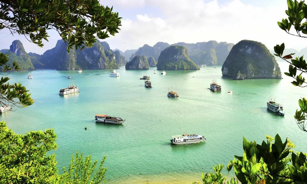 KRYSTALLKLART VANN: Halong-bukta er et av Vietnams vakreste steder. Foto: Shutterstock / NTB Scanpix