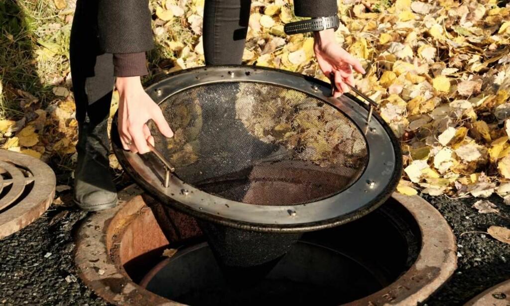 FILTER: Forskere ved NTNU har utviklet et filter som skal sørge for at gummigranulat fra kunstgressbaner ikke forsvinner ut i naturen. Flere tonn med gummi forsvinner hvert år fra hver eneste kunstgressbane i Norge. Mye av dette havner i vannet. Foto: Privat