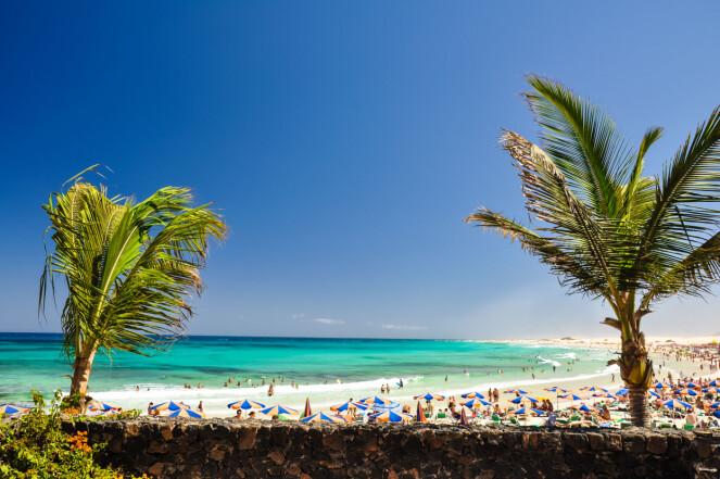 Corralejo Beach i fuerteventura. Foto: NTB Scanpix