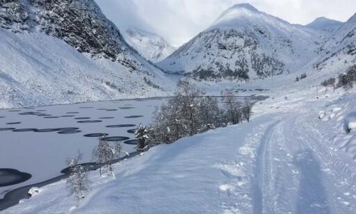 SETERVEI: Anne gikk innover denne seterveien langs vannet da hun ble oppmerksom på is-sirklene. Foto: Anne Rudsengen