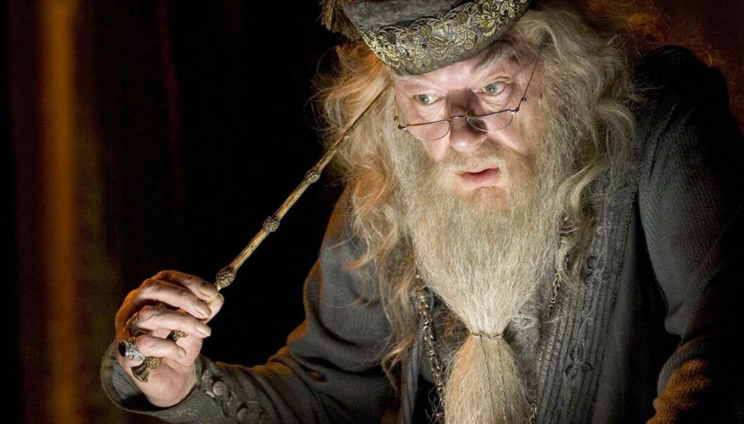 <strong>ORIGINALEN:</strong> Michael Gambon som den eldre - og betraktelig mer skjeggete - Albus Humlesnurr. Foto: Warner Bros.