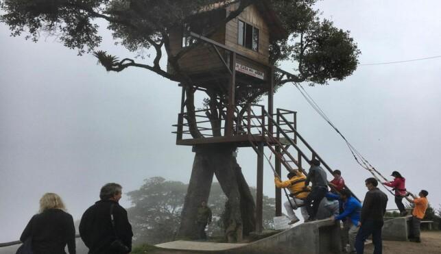 ATTRAKSJON: Hver dag kommer hundrevis av mennesker opp i fjellet for å prøve huskene og se trehytta der Carlos Sanchez har bodd i 18 år. Foto: Eliot Stein.