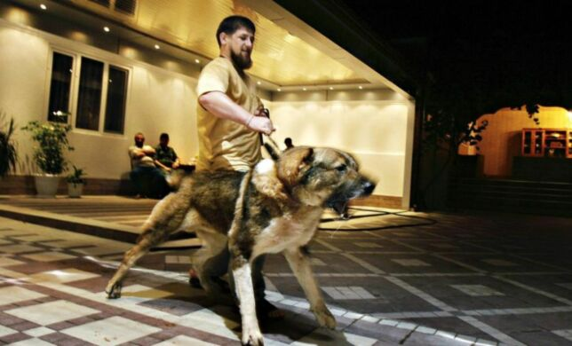 image: Han er Putins «pitbull»