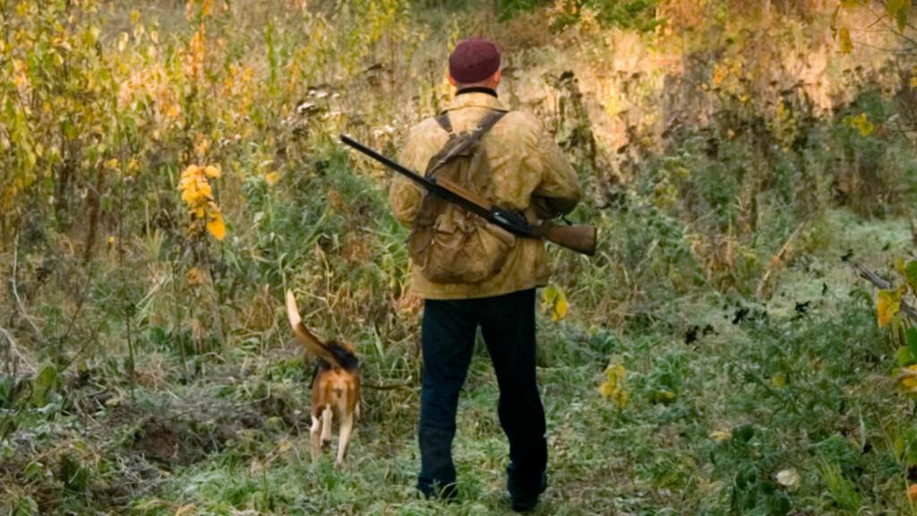 HAREJEGER: Jakter du på hare, bør du kjenne til harepest og hvordan du kan bli smittet - selv om risikoen ikke er overveiende høy, er det lurt å ta noen forholdsregler. Foto: NTB Scanpix/Shutterstock