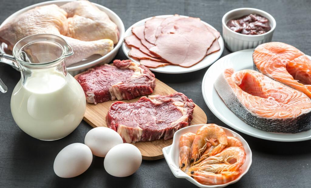 PROTEINER: Fisk, kjøtt, melk, ost og egg er rike på proteiner.  Foto: Phototasty/ Shutterstock/ NTB scanpix