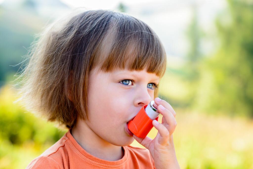 ASTMA OG ALLERGI: Astma er den hyppigste kroniske sykdommen blant barn. Foto: NTB Scanpix