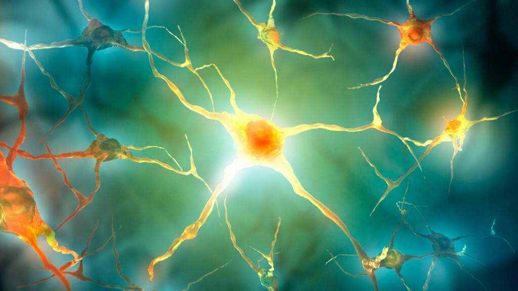 MULTIPPEL SCLEROSE: Normalt går overføring av nerveimpulser lynraskt, men ved MS blir myelinet i nerveceller angrepet, og nervene jobber saktere med overføring. Foto: NTB Scanpix/Shutterstock