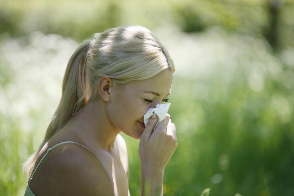 20 prosent nordmenn sliter med pollenallergi.  Foto: All Over Press