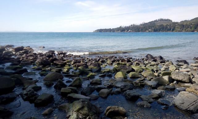 FUNNET I VANNKANTEN: Den 13. foten ble funnet 8. desember, ved tettstedet Jordan River på Vancouverøya. Foto: Blake Handley / Creative Commons