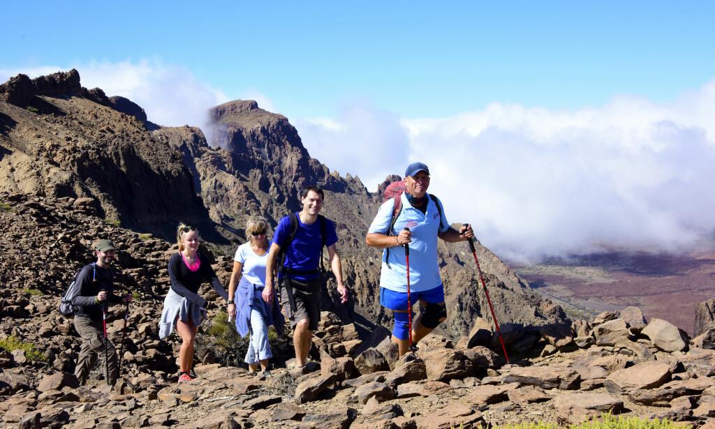 SOM PÅ MÅNEN. Tenerife er en vulkansk øy, så fotturer i høyden går over et steinete, men vakkert, månelandskap. Foto: Torild Moland / Magasinet Reiselyst