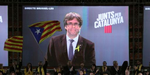 image: Catalonia koker