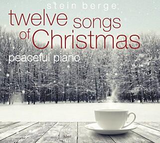 TOLV SANGER til jul, på et fredfylt piano. Framført av Stein Berge Svendsen.