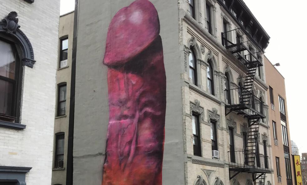 KJEMPEPENIS: Dette bildet ble malt julaften på et seks etasjer stort bygg i New York. Kunstneren bak bildet er svenske Carolina Falkholt. Foto: NTB scanpix