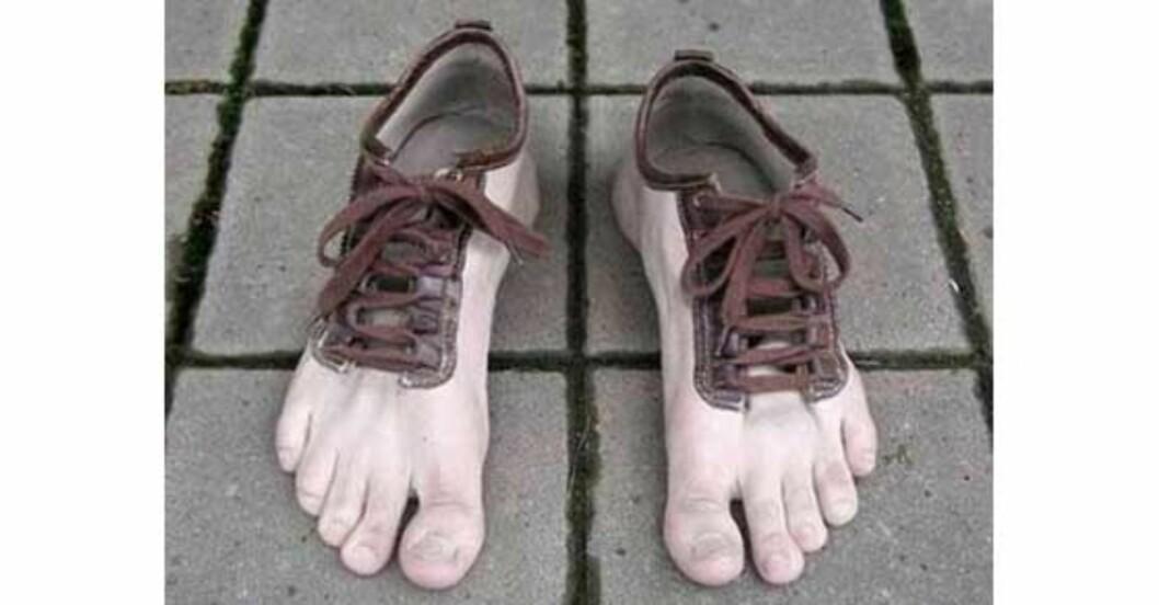 Verdens styggeste sko