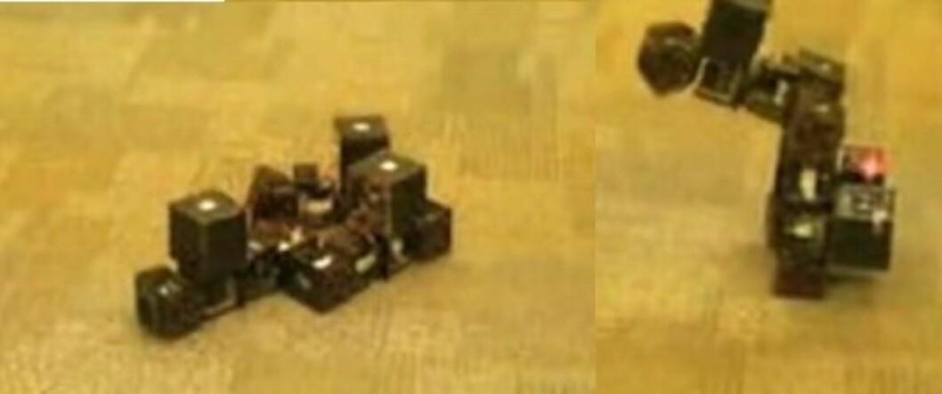 Reassembling robot