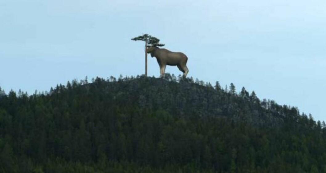 Verdens største elg