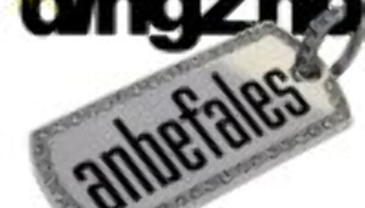 dingz_anbefales100