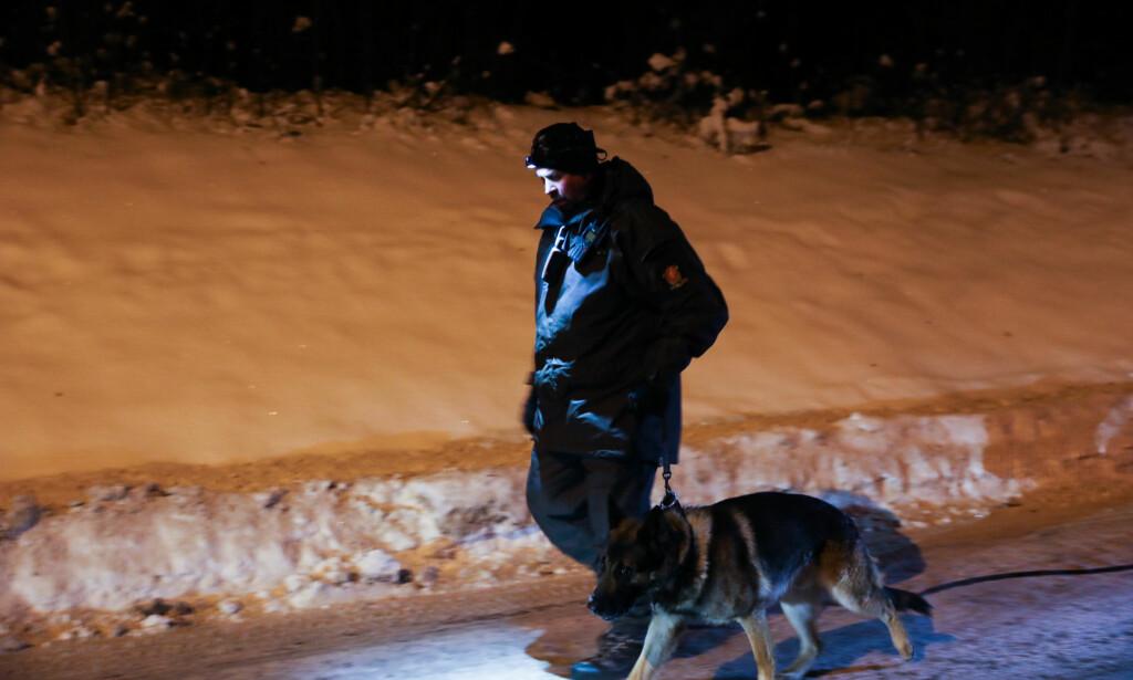HUNDER: Politiets hundepatruljer har lett i områdene rundt Brumunddal. Foto: Christian Roth Christensen / Dagbladet