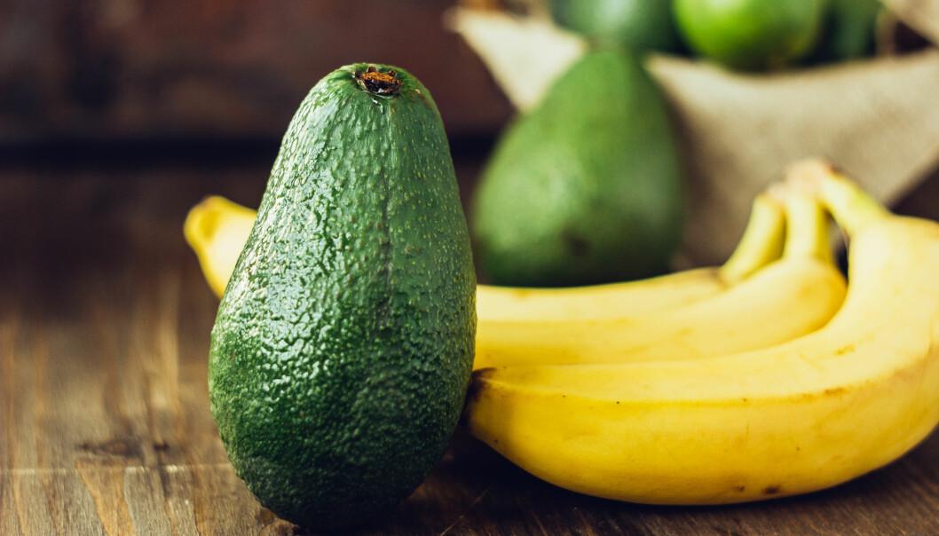 KALORIRIK FRUKT: Avokado har blitt en stor mattrend de siste årene, men visste du at det er en av de mest kaloririke fruktene du kan spise? FOTO: NTB Scanpix