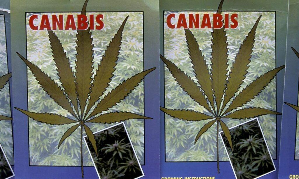 image: Avkriminalisering er ikke nok