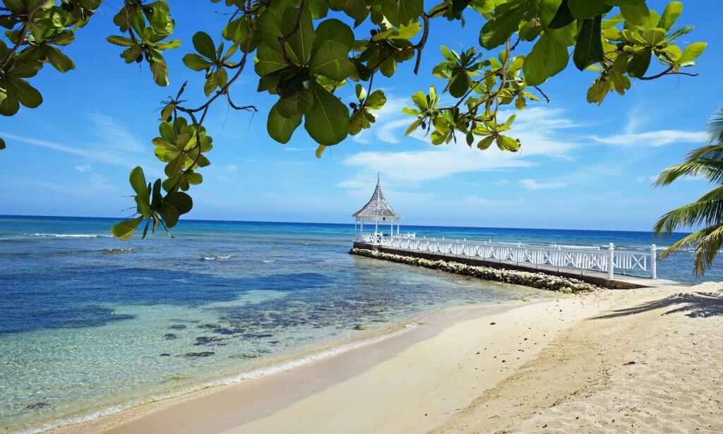 PARADIS: Half Moon beach i Montego Bay på Jamaica er et paradis med sine kritthvite strender og varme, men Jamaica har også en dyster drapsstatistikk. Foto: Scanpix