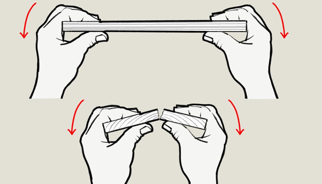 FIBERRETNING. Det er umulig å knekke en bordbit når belastningen går på tvers av fiberretningen. Bøyer du bordbiten på langs derimot (tegningen under) knekker den om du er sterk i klypa. Illustrasjon: Øivind Lie-Jacobsen