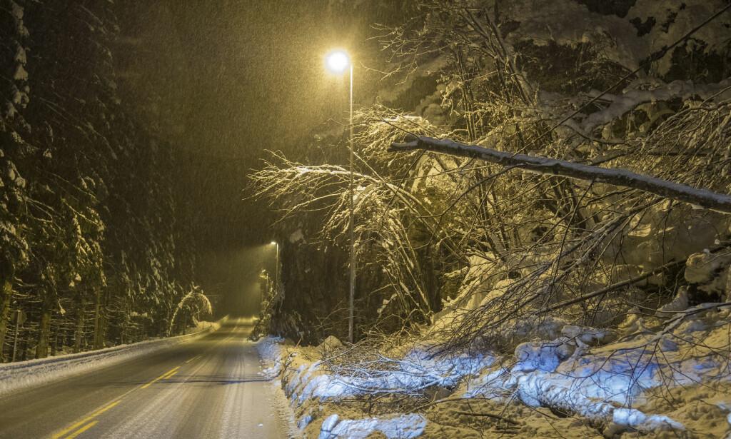 DYR SNØ: Flere tusen sørlendinger har vært uten strøm som følge av snøen. Regninga i etterkant ventes å bli høy. Foto: Tor Erik Schrøder / NTB scanpix