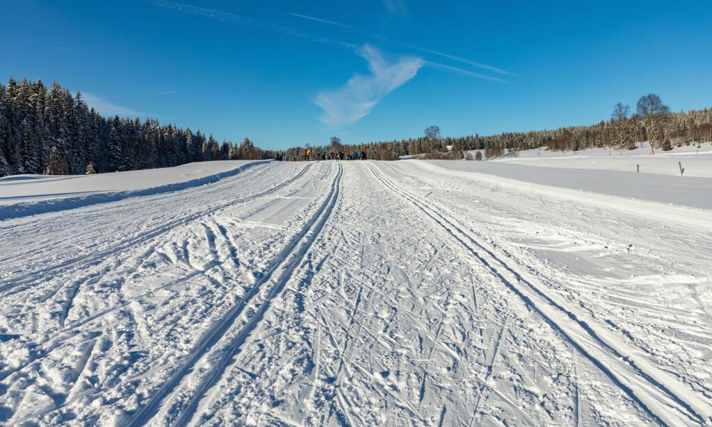 GREIT I KALDVÆR: Er det fast snø vil du ikke ødelegge prepareringen - men er snøen løs så vil fotsporene dine lage store hull som ødelegger løypene - selv om du holder deg unna de klassiske skisporene. Foto: Shutterstock/NTB Scanpix