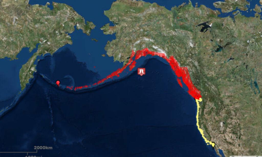 FAREOMRÅDER: Det er utstedt tsunamivarsel for områdene på USAs nordvestkyst (i rødt). Jordskjelvets episenter er den røde markøren ute i Alaskabukta. På den gule stripa langs kysten av USA er det også tsunamiberedskap. Skjermdump: Tsunami.gov