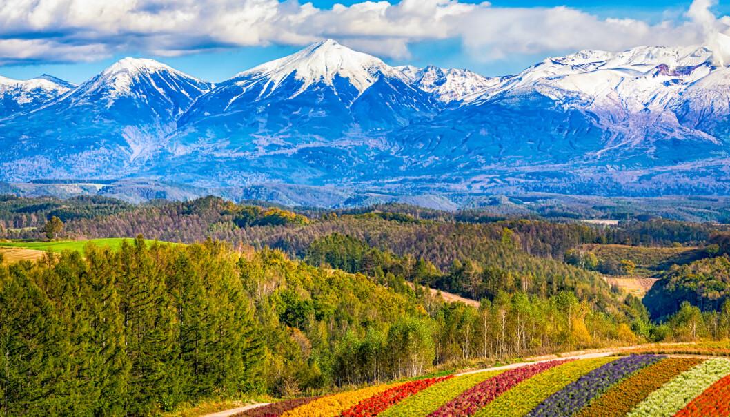 Hokkaido Foto: Scanpix