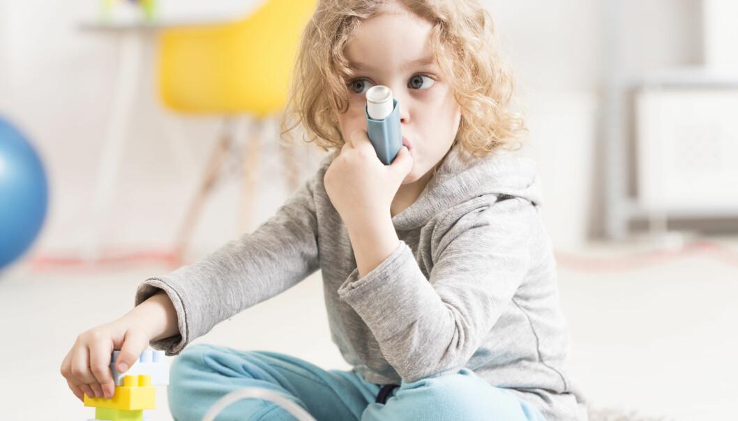 ASTMA: Flere får astma nå enn før. FOTO: NTB Scanpix