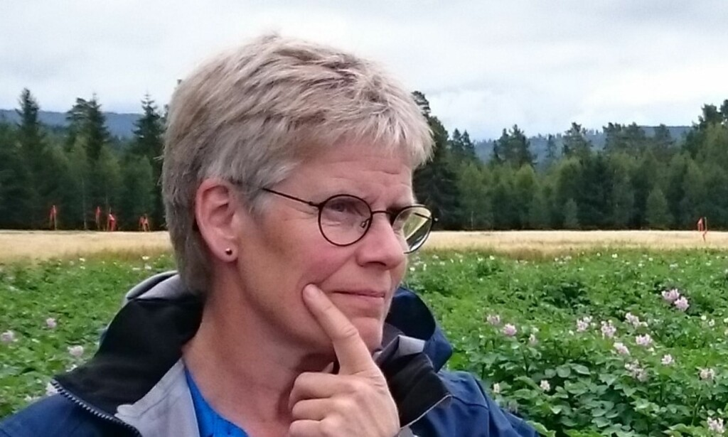 EKSPERT: Borghild Glorvigen, fagkoordinator for potet i Norsk Landbruks- rådgivning, gir gode råd om oppbevaring av poteter. Foto: May Bente Brurberg.