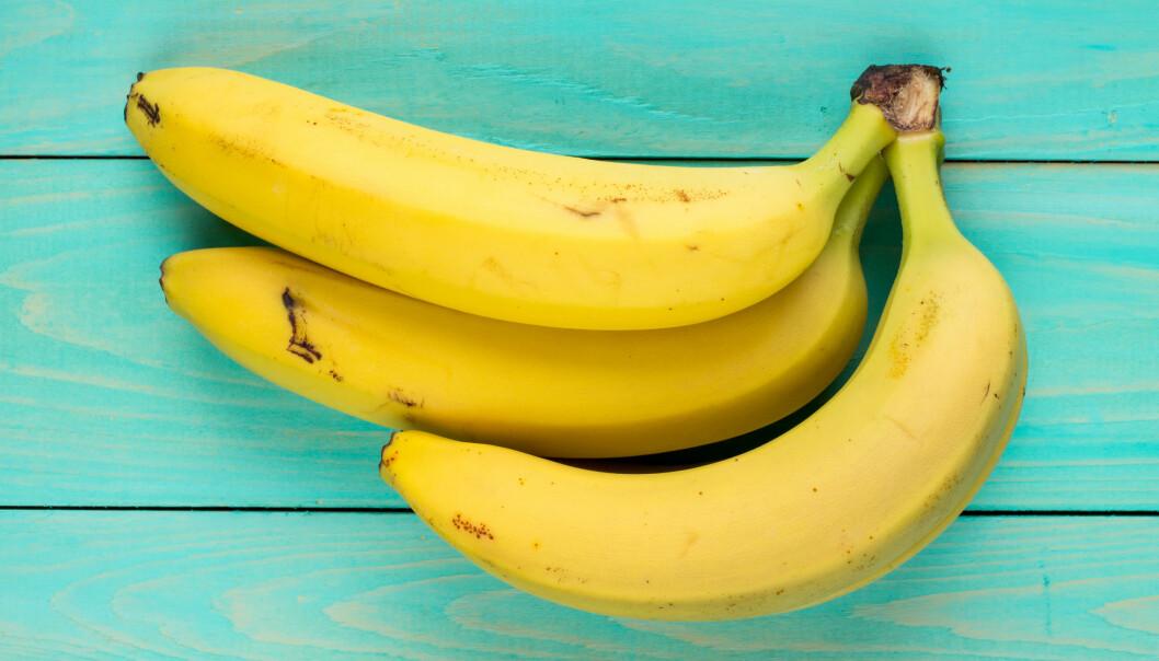 BANANER: Det japanske firmaet Setsuzo Tanaka har utviklet en banan med spiselig skall. FOTO: NTB Scanpix