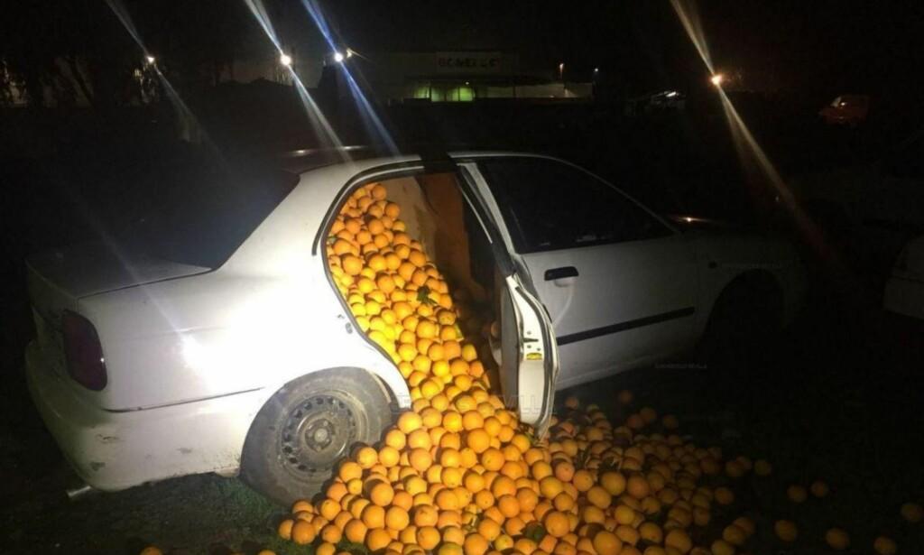 FLERE TUSEN KILO: Politiet i Sevilla i Spania fikk seg en overraskelse da de åpnet dørene på denne bilen forrige uke. Foto: Politiet