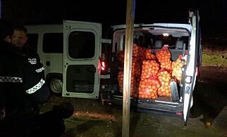 FEM ARRESTERTE: Fem appelsintyver er arrestert. Foto: Politiet