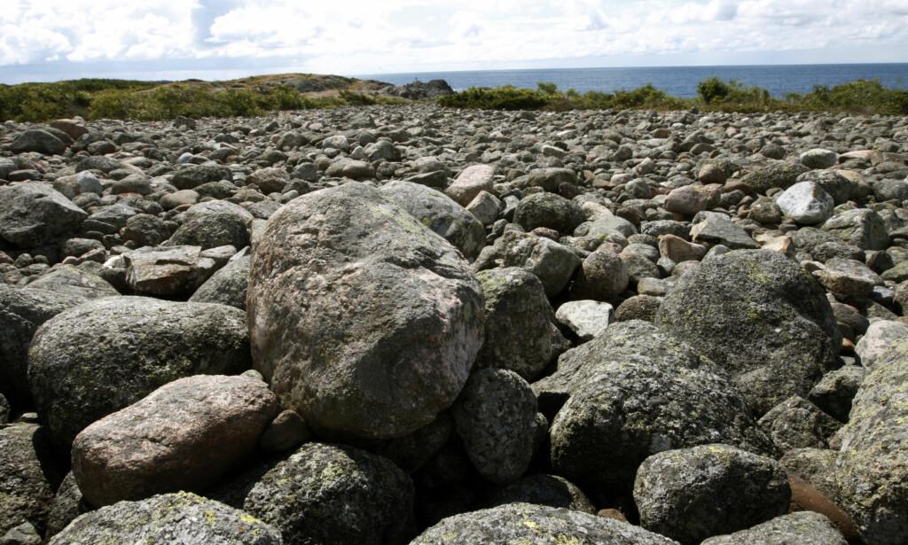 """MØLEN, med sin fantastiske rullesteinsstrand, er utgangspunktet for Sigurd Hvervens erfaring med naturen i boka """"Naturfilosofi"""". Foto: NTB Scanpix"""