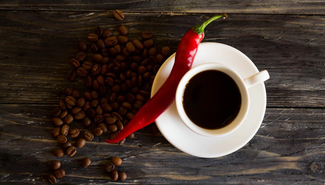 KAFFE: Ifølge ernæringsfysiolog Gunn Helene Arsky kan kaffe og chili kan være med på å påvirke fettforbrenningen. Foto: NTB Scanpix