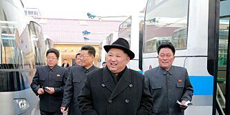 image: FN: Kim har tjent milliarder på ulovlig eksport
