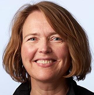 SKADELIG STOFF: Kadmium, som finnes i gamle legoklosser, kan være helseskadelig, sier Heidi Morka, Seksjonssjef i Kjemikalieseksjonen i Miljødirektoratet. Foto: Miljødirektoratet