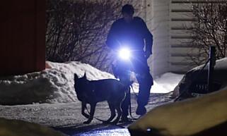 SØKER: Politiet er på plass med blant annet hunder i søket etter gjerningspersoner. Foto: NTB Scanpix