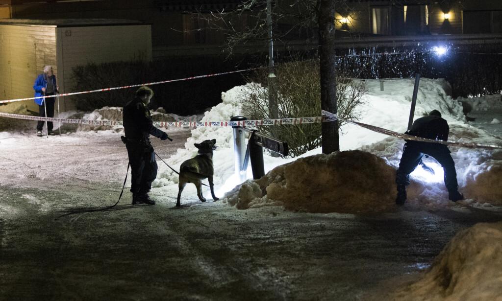 ETTERFORSKER: Politiet etterforsker gårsdagens skyting på Holmlia sør i Oslo med full styrke. Ingen er pågrepet, og politiet ber om tips fra publikum. Foto: Berit Roald / NTB scanpix