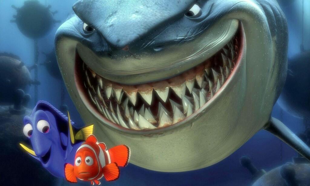 IKKE SÅ LETT: Haien er twitterfeeden, Nemo er den ulykkelige kommentarskribenten. Foto: NTB Scanpix